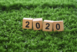 Grass Clippings - 2020 Lawn Care