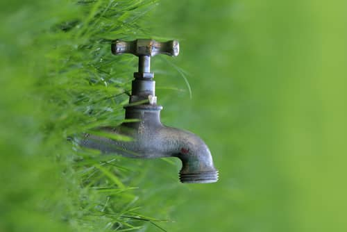 Lawn-Water-Tap