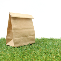 Shopping Bag on Lawn
