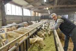 Old Farmers paid to retire